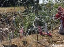 Унгарски евродепутат: Да сложим свински глави по границата, за да плашат нелегалните мигранти