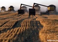 Доклад на ООН: възможно е Русия да се превърне в лидер по износ на пшеница