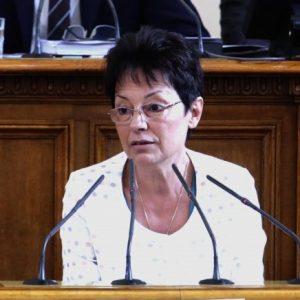 Ирена Анастасова, БСП: ГЕРБ се опитва да налага партиен контрол над учителите